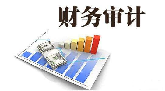 财务审计报道的标准格式介绍